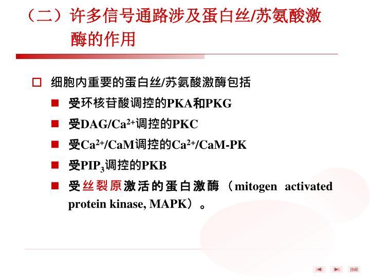 (二)许多信号通路涉及蛋白丝