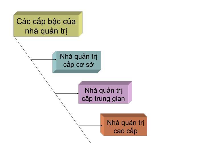 Các cấp bậc của nhà quản trị