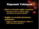 kapsaml yakla m1