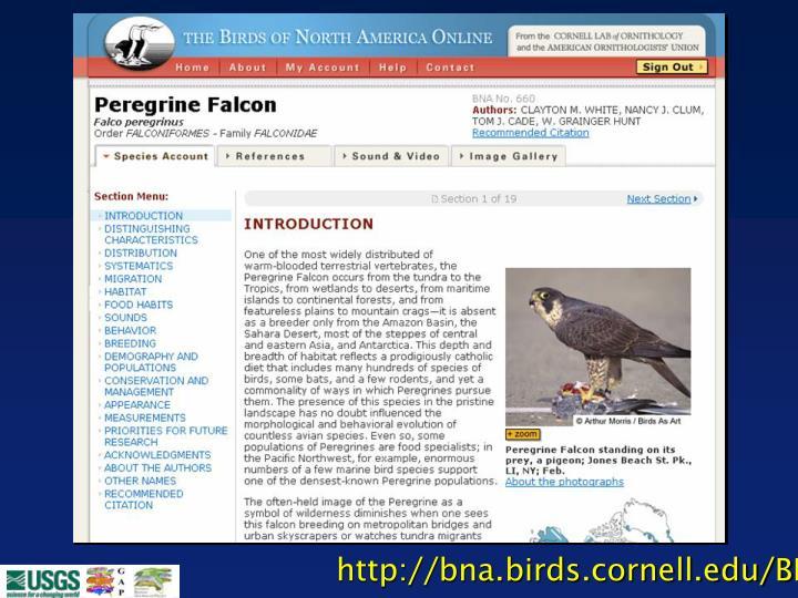 http://bna.birds.cornell.edu/BNA/
