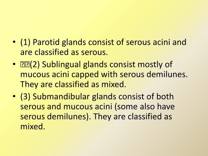 (1) Parotid glands consist of serous