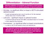 differentiation adrenal function