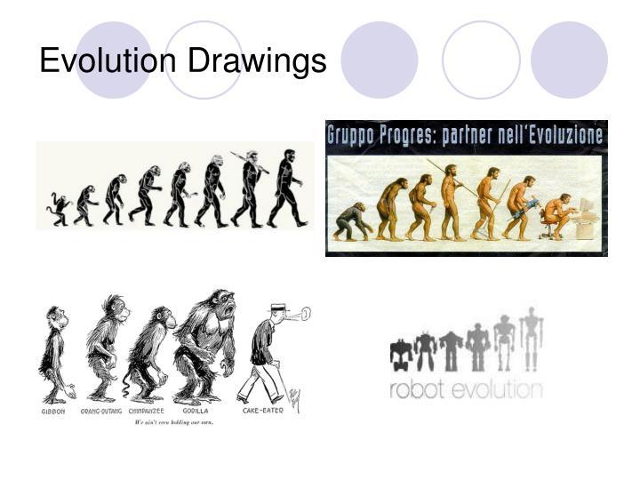 Evolution Drawings