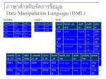 data manipulation language dml14