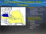 gulf of mexico caribbean area forecasts
