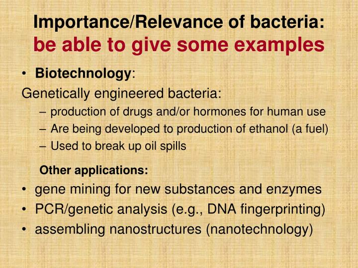 Importance/Relevance of bacteria: