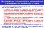 discriminazione e differenziazione delle condizioni di vendita praticate dall industria di marca4