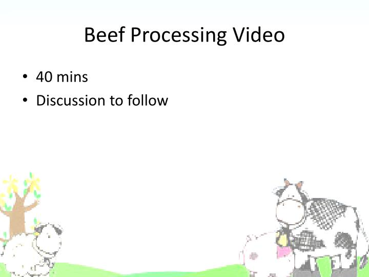 Beef Processing Video