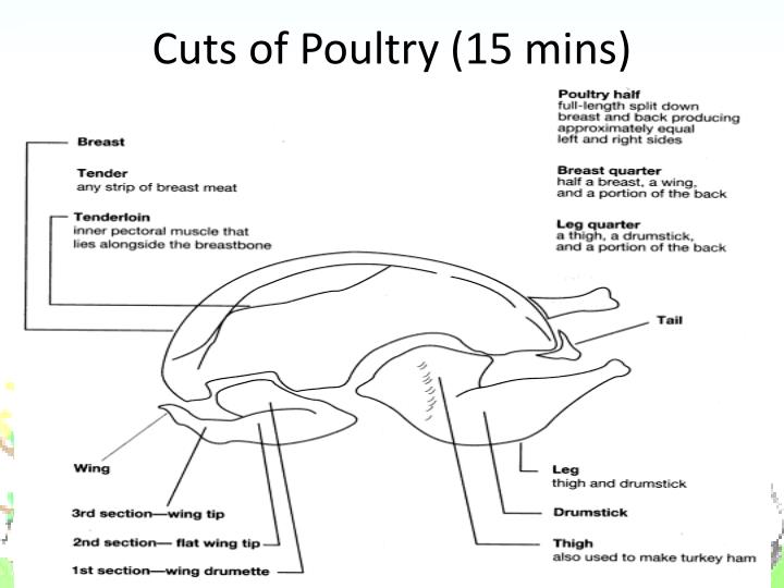 Cuts of Poultry (15 mins)