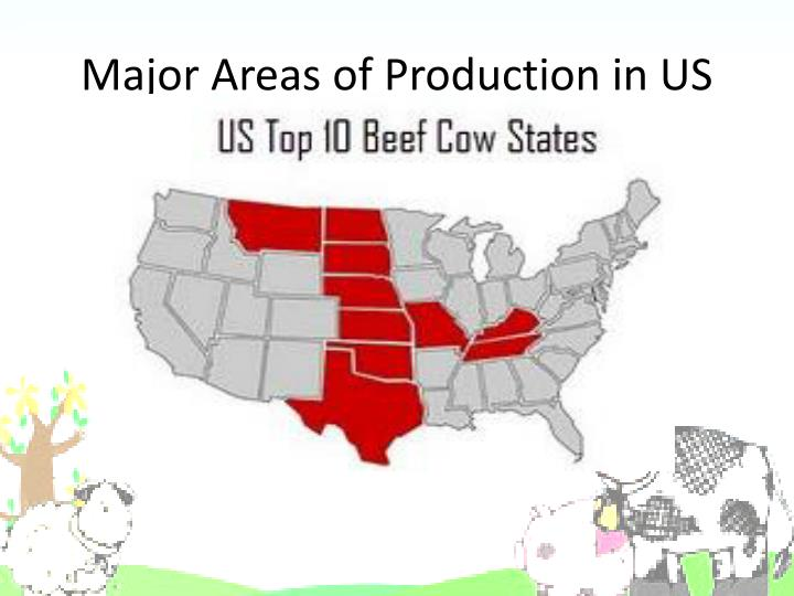 Major Areas of Production in US