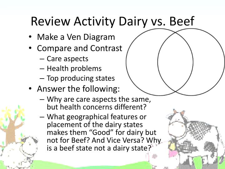 Review Activity Dairy vs. Beef