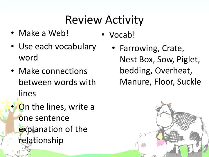 Review Activity