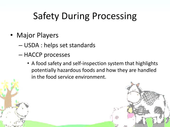 Safety During Processing