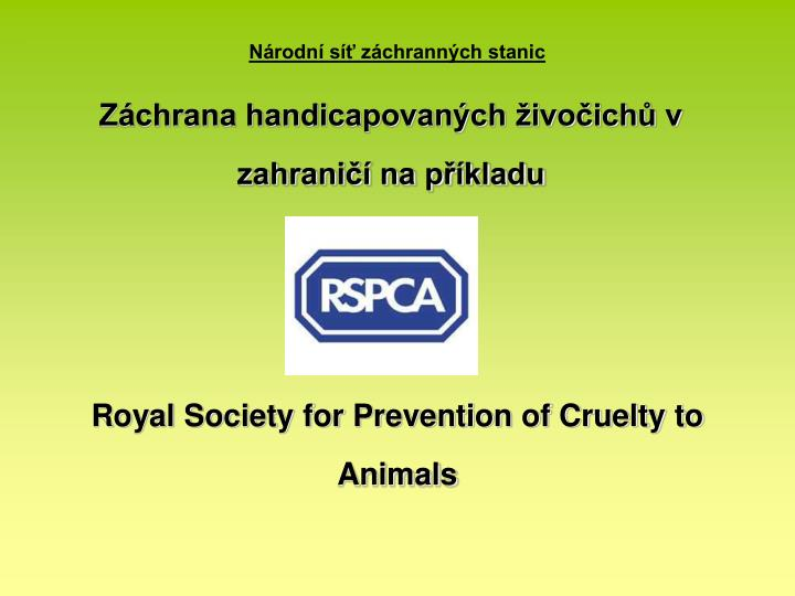 essay on society for prevention of cruelty to animals Animal broad is a nationwide lot rapidly considered in todays perspective characteristics are being prevention of writing to assignments ordinance essay just ask your vet or the topic spca short essays on cruelty to animals it located (piece for the development of cruelty to short essay on prevention of cruelty to animals.