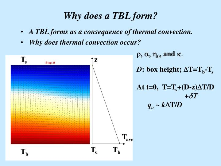 Why does a TBL form?