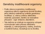 geneticky modifikovan organismy