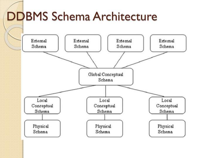 DDBMS Schema Architecture
