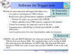 software for trigger tests