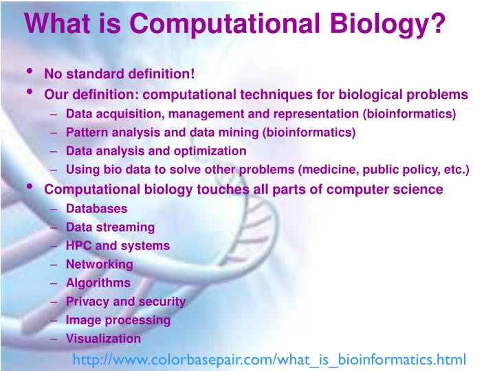 What is computational biology