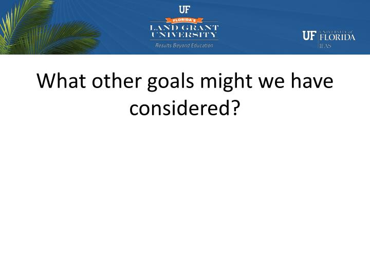 What other goals might we have considered?