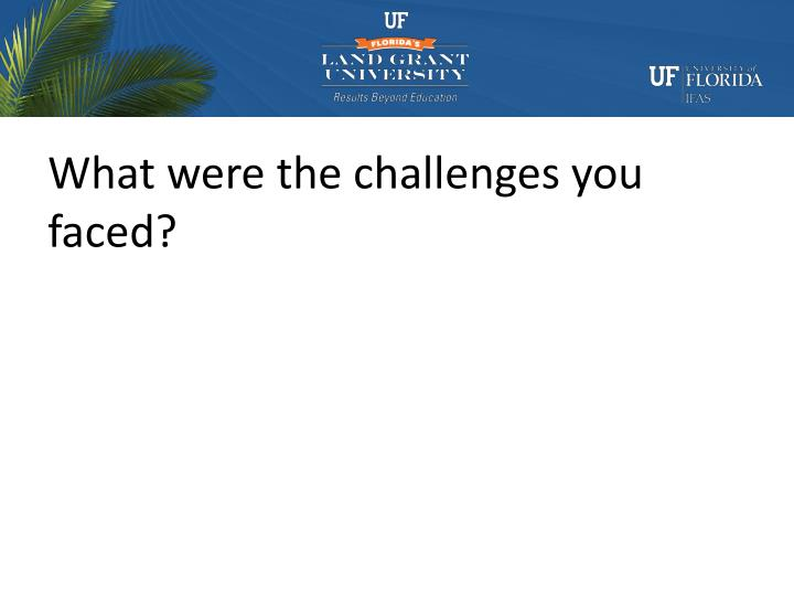 What were the challenges you faced?