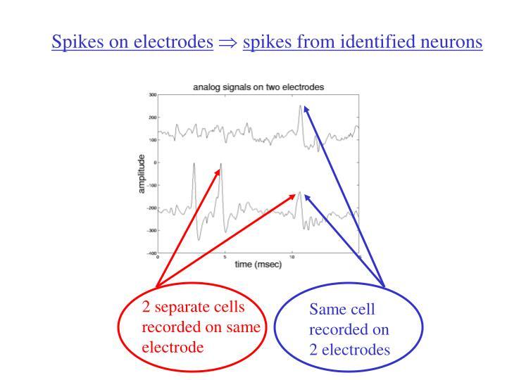 2 separate cells