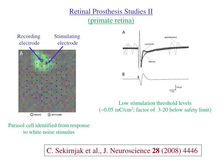 Retinal Prosthesis Studies II