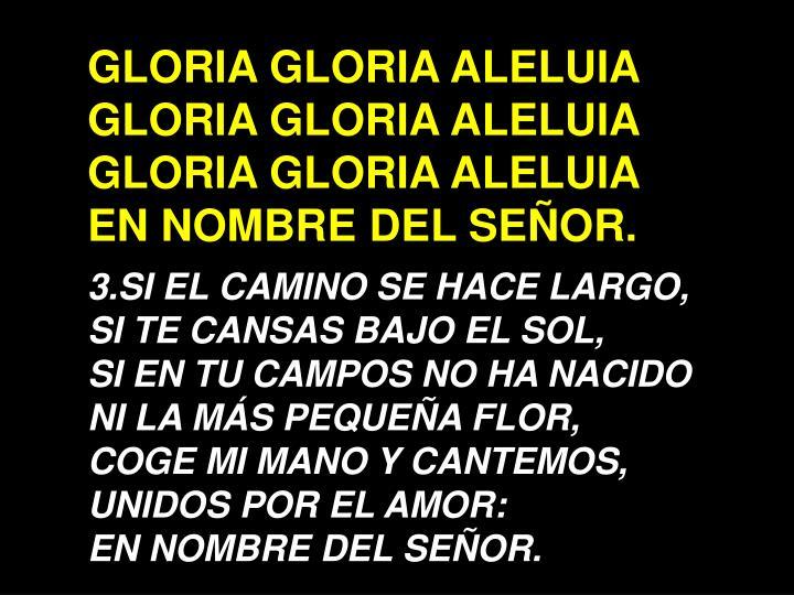 GLORIA GLORIA ALELUIA