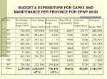 budget expenditure for capex and maintenance per province for epwp 08 09