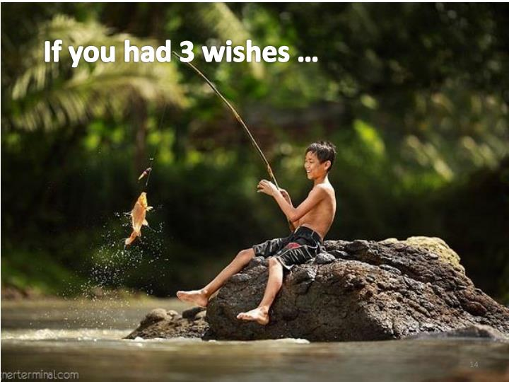 If you had 3 wishes …