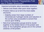 6 4 how do globular polypeptides fold into 3 o protein structures