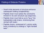 folding of globular proteins