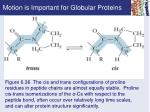 motion is important for globular proteins3