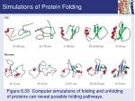 simulations of protein folding