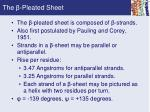 the pleated sheet