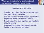 what are the structural and functional advantages driving 4 o association