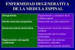 enfermedad degenerativa de la medula espinal