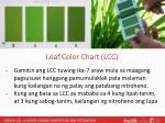 leaf color chart lcc
