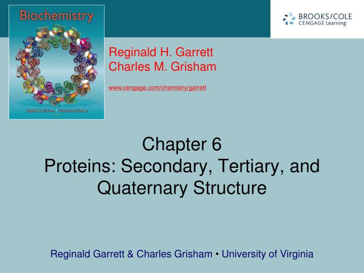 chapter 6 proteins secondary tertiary and quaternary structure n.
