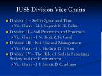 iuss division vice chairs