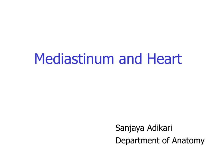 mediastinum and heart n.