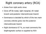right coronary artery rca