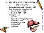 alanine aminotransferase alt sgpt