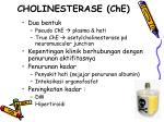 cholinesterase che