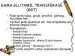 gama glutamil transferase ggt