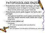 patofisiologi enzim