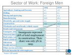 sector of work foreign men