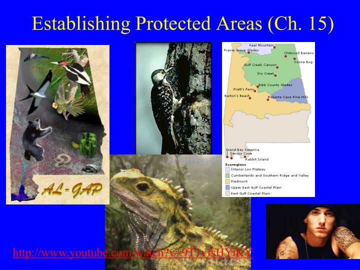 establishing protected areas ch 15 n.