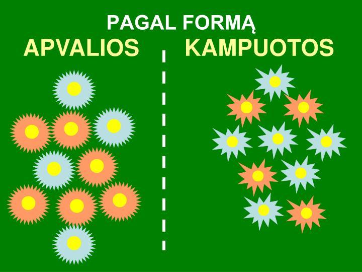PAGAL FORMĄ