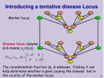 introducing a tentative disease locus